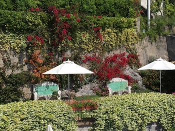 The garden in Amalfi Coast